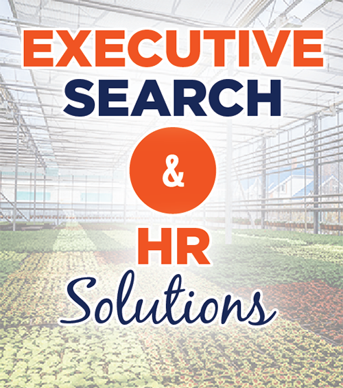 Executive Search & HR Solutions