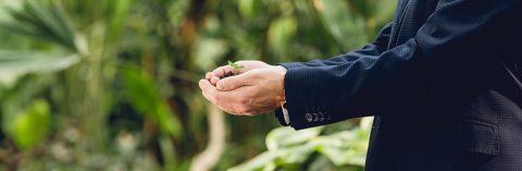 Hiring in Horticulture